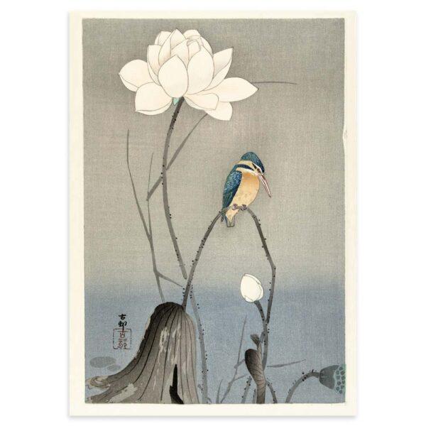 Plakat - Japansk Træsnit - Isfugl med Lotus Blomst 50x70cm