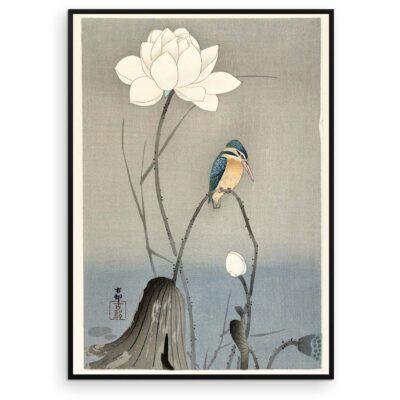 Plakat - Japansk Træsnit - Isfugl med Lotus Blomst - Aruhana