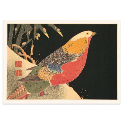 Plakat - Japansk træsnit - Guldfasanen 50x70cm