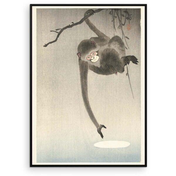 Plakat - Japansk Træsnit - Aben og månen - Ohara Koson - Aruhana