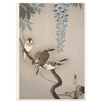 Plakat - Japansk Træsnit - Skovspurve i blåregn - Ohara Koson 50x70cm