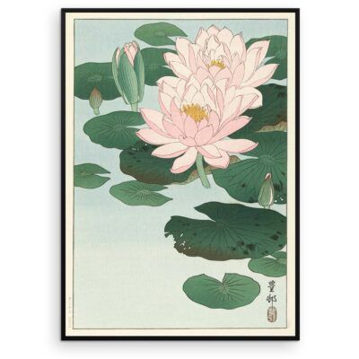 Plakat - Blomstrende Åkander - Ohara Koson Japansk Træsnit - Aruhana