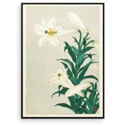 Plakat - Liljer - Japansk Træsnit af Ohara Koson - Aruhana
