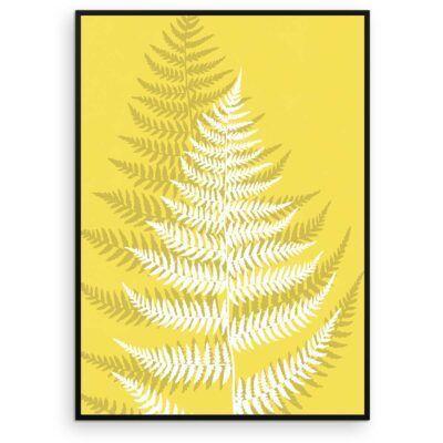 Plakat - Fjerbregne - Illuminating Yellow - Aruhana