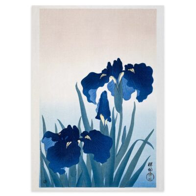 Plakat - Iris i blomst - Ohara Koson Japansk Træsnit 50x70cm