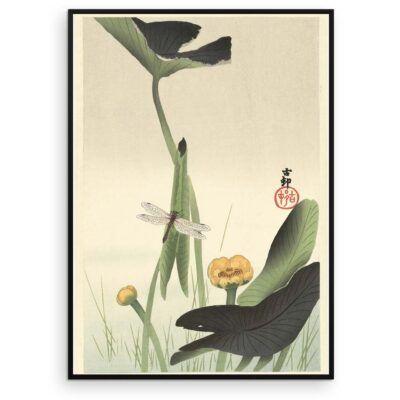 Plakat - Japansk træsnit - Guldsmed og lotus - Ohara Koson - Aruhana