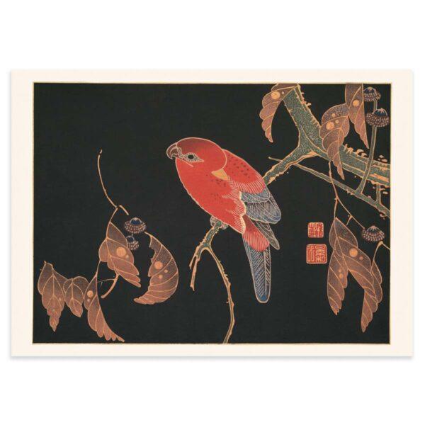 Plakat - Japansk træsnit - Den røde papegøje 50x70cm