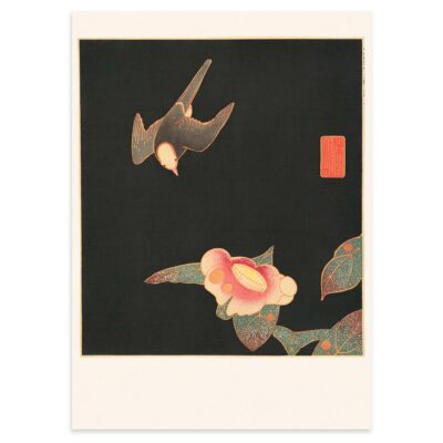 Plakat - Japansk træsnit - Svale og kamelia blomst 50x70cm