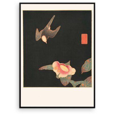 Plakat - Japansk træsnit - Svale og kamelia blomst - Aruhana