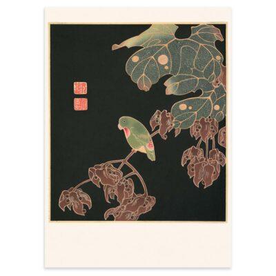 Plakat - Japansk træsnit - Parakitten 50x70cm