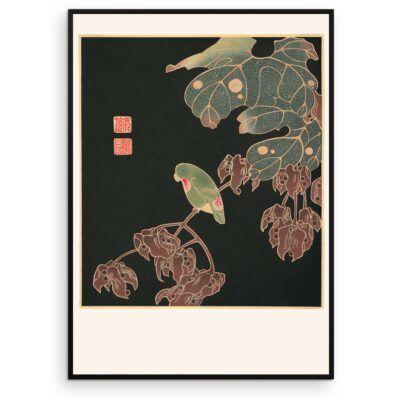 Plakat - Japansk træsnit - Parakitten - Aruhana