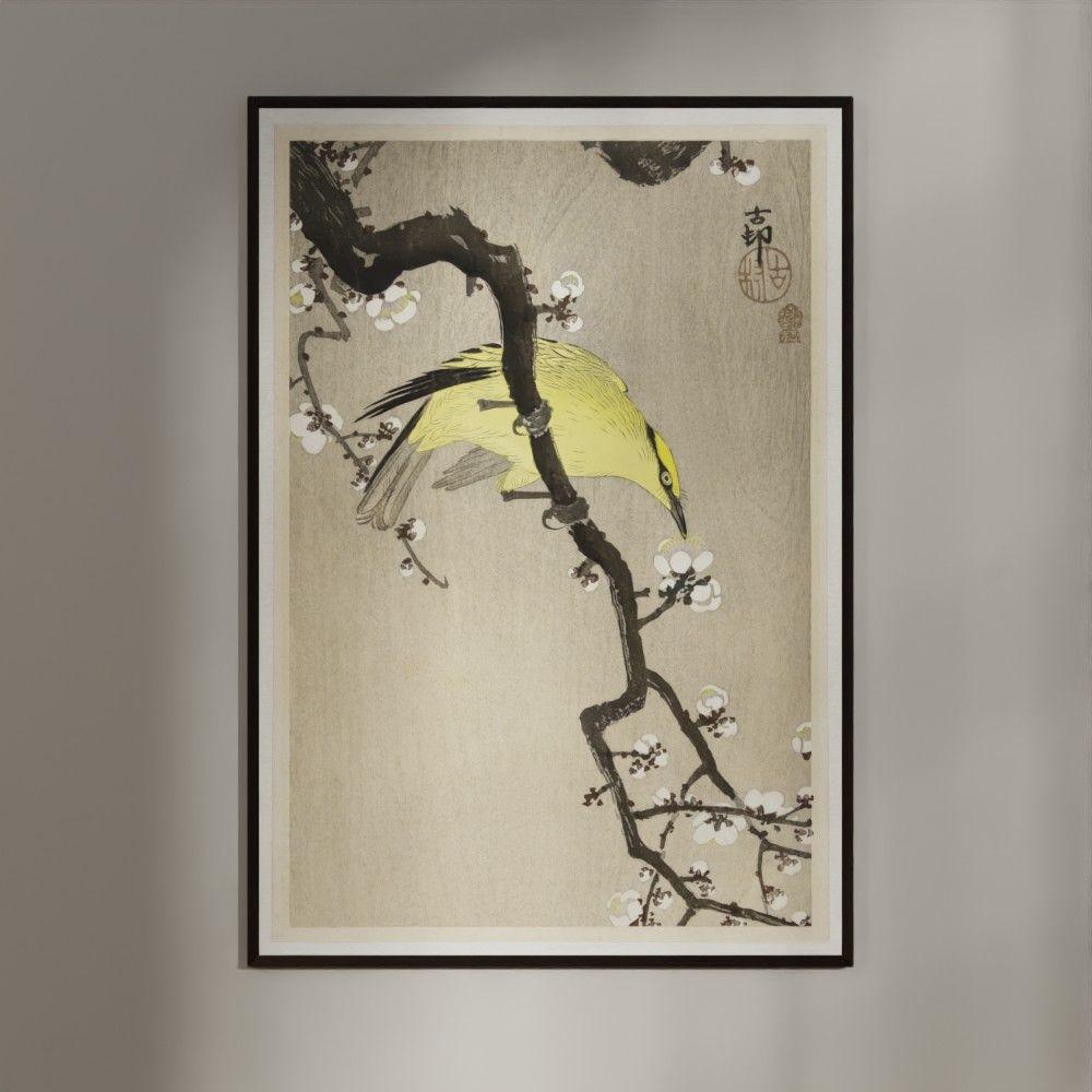 Plakat - Japansk Træsnit - Kinesisk Pirol på Blommegren 70x100cm