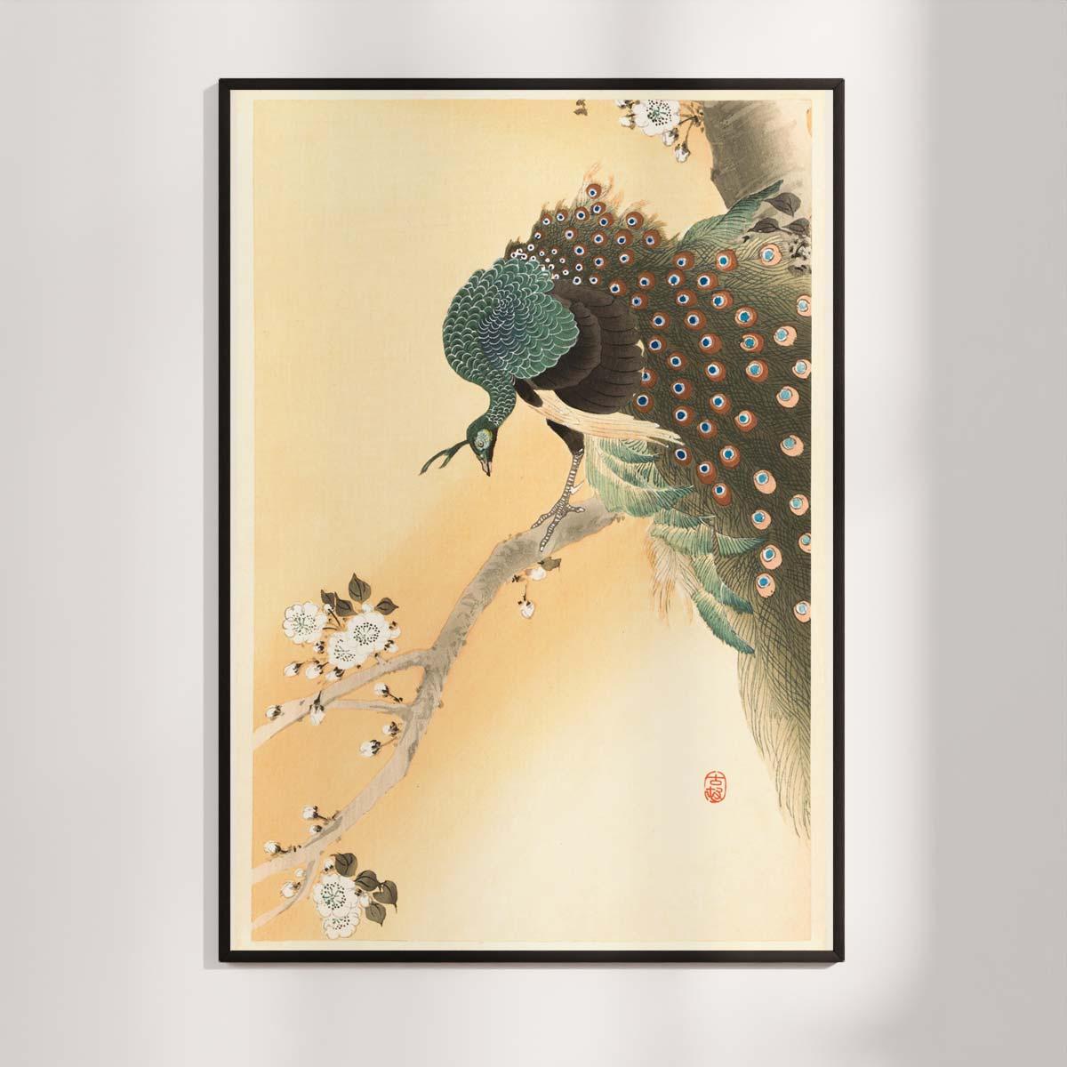 Plakat - Japansk Træsnit - Påfugl i kirsebærtræ - Ohara Koson
