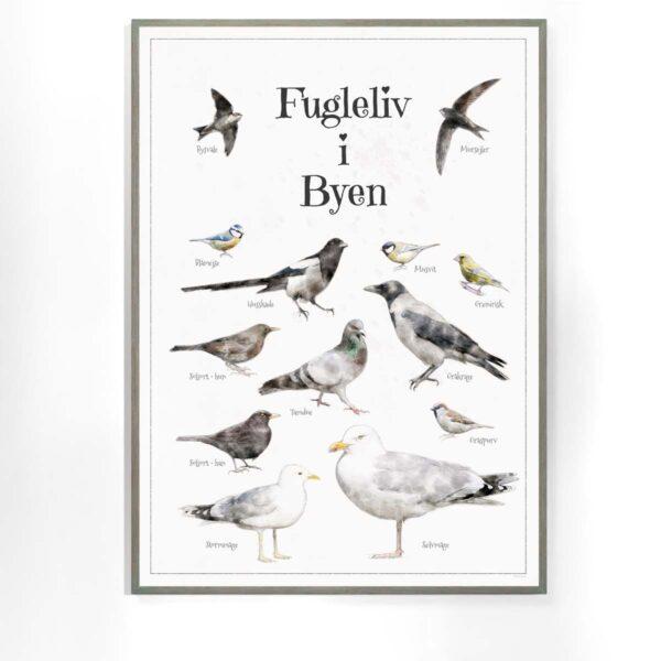 Fugleplakat - Plakat med Fugleliv i byen - B2 50x70cm Aruhana