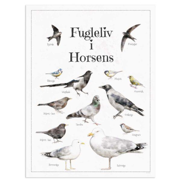 Fugleplakat - Plakat med Fugleliv i Horsens - 30x40cm Aruhana