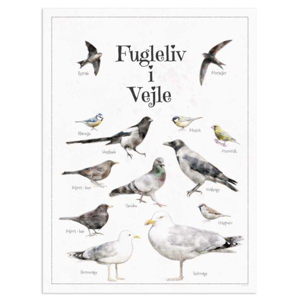 Fugleplakat - Plakat med Fugleliv i Vejle - 30x40cm Aruhana