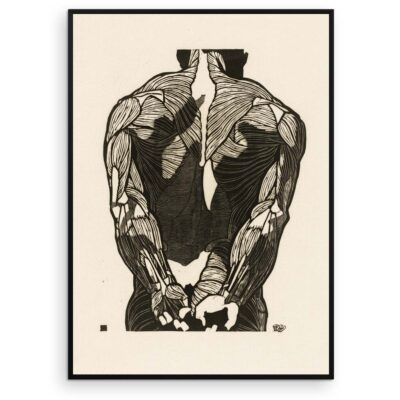 Plakat - Anatomisk træsnit - Studie af en mands ryg og arme - Aruhana