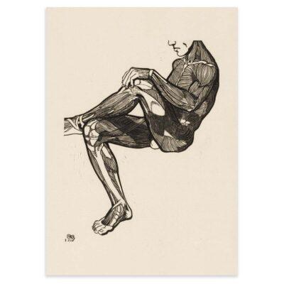 Plakat - Anatomisk træsnit - Studie af en mands ben- og armmuskler 50x70cm