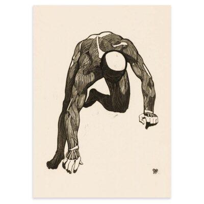 Plakat - Anatomisk træsnit - Studie af en mands arm og rygmuskler 50x70cm