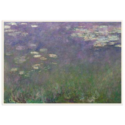 Plakat - Åkander - Claude Monet 1 - 70x100cm