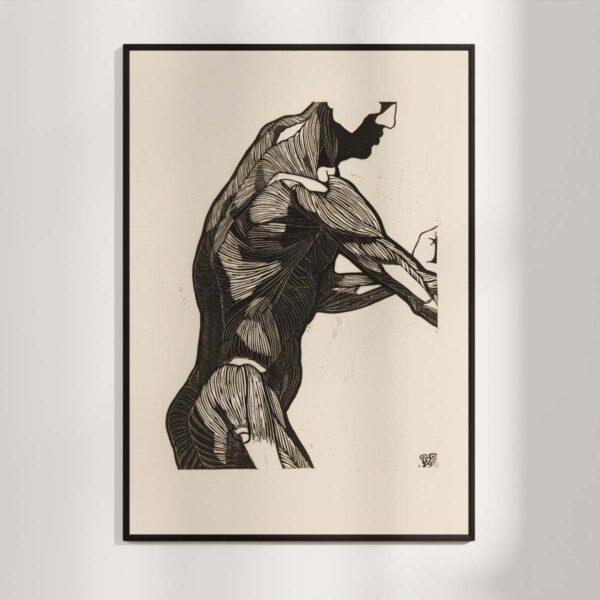 Plakat - Anatomisk træsnit - Studie af en mands ryg og armmuskler