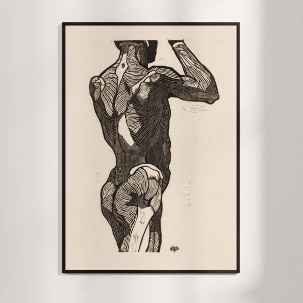 Plakat - Anatomisk træsnit - Studie af en stående mands ryg og glutes-muskler