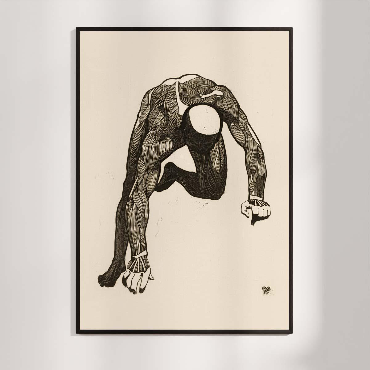 Plakat - Anatomisk træsnit - Studie af en mands arm og rygmuskler