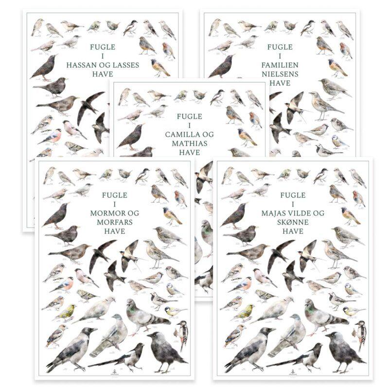 Plakat med fugle i haven og din egen tekst - Personlig fugleplakat med danske fugle
