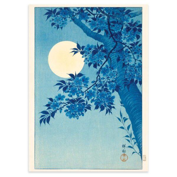 Sakura Kirsebærblomster i måneskin - Ohara Koson træsnit 1932 - 50x70cm
