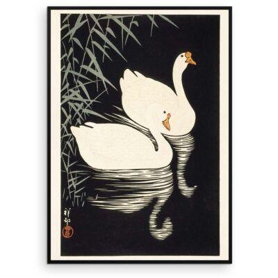 Hvide svane-gæs og siv - Ohara Koson træsnit 1928 -Aruhana